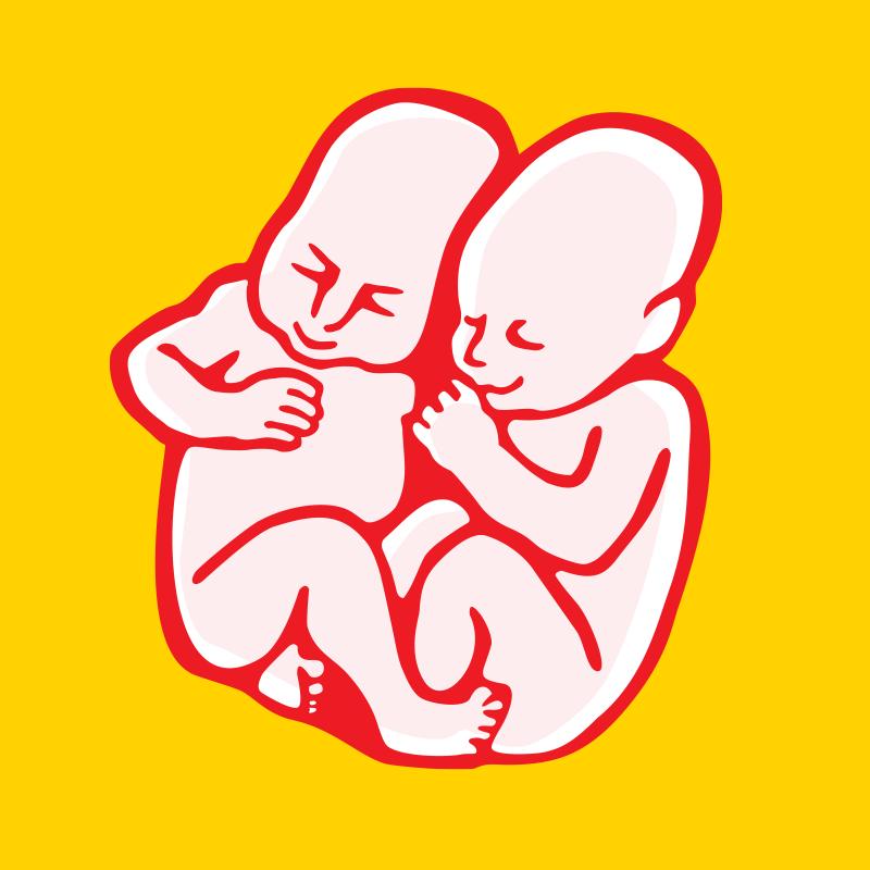 Logo Pohoda